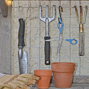 Clean Garden Tools With Tea